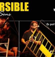 Reversible, un concert com no havies sentit mai